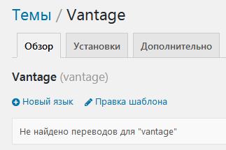 Перевод темы Vantage в плагине Loco Translate