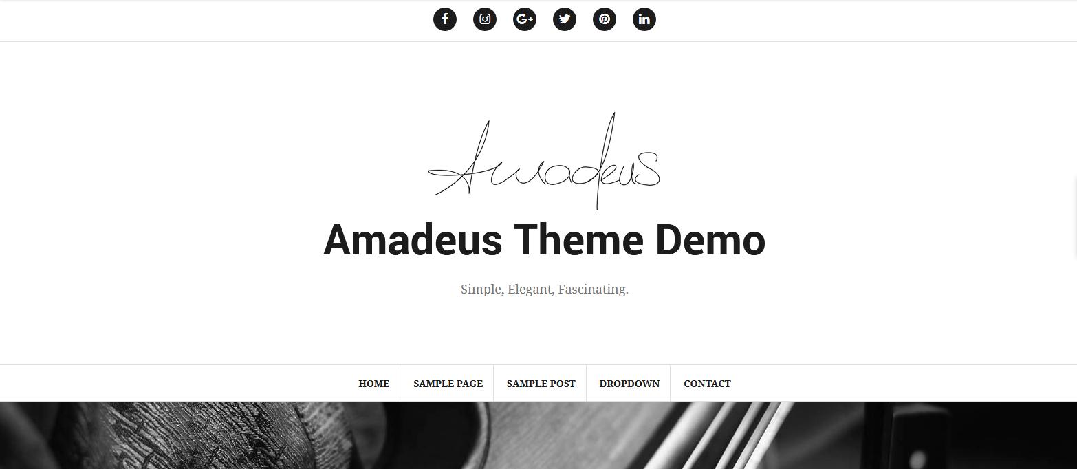 Демо-сайт с темой Amadeus