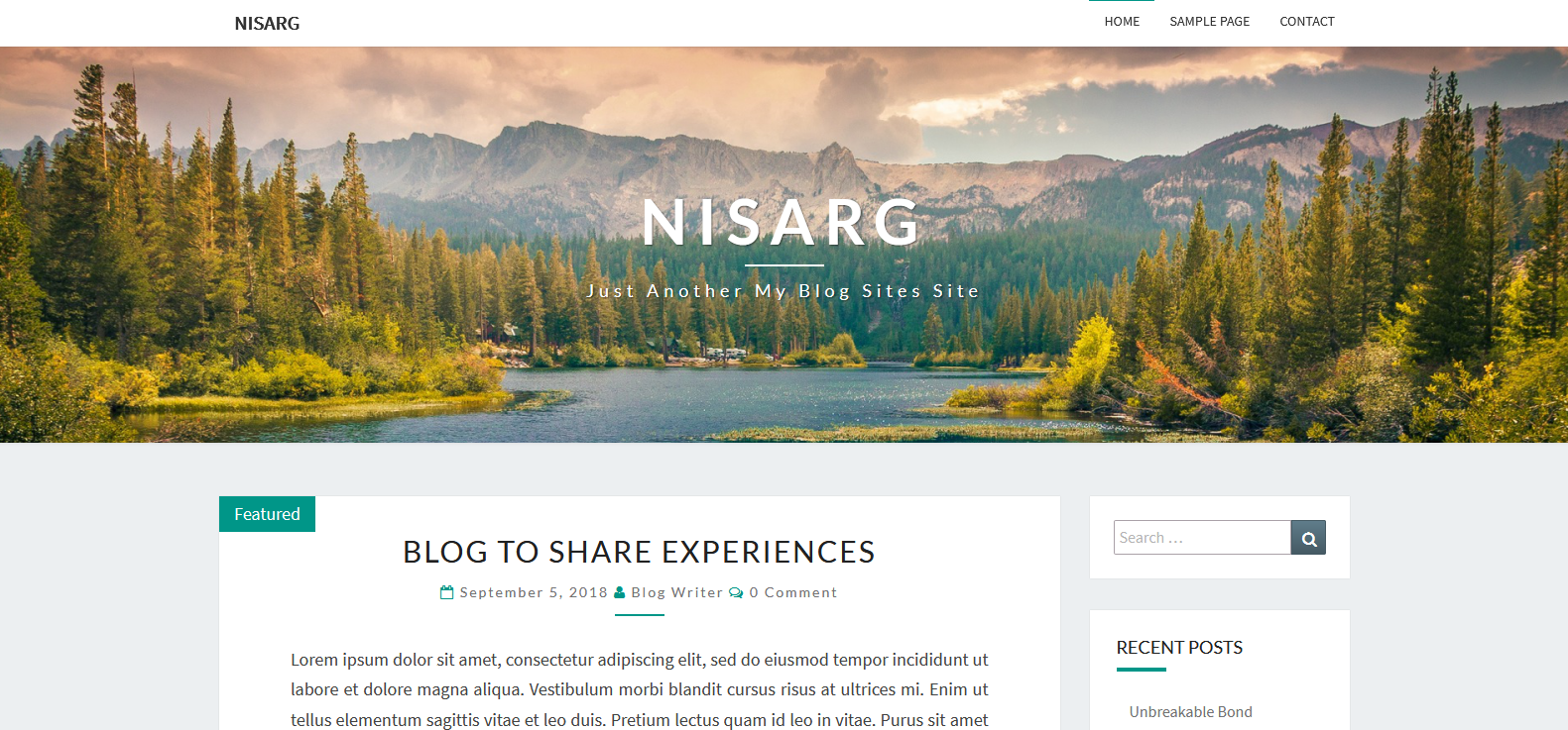 Демо-сайт с темой Nisarg
