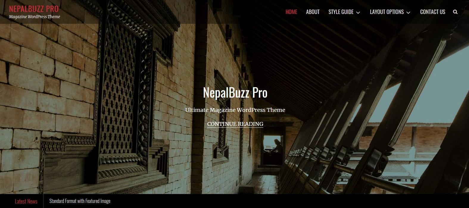 Демо-сайт с темой NepalBuzz