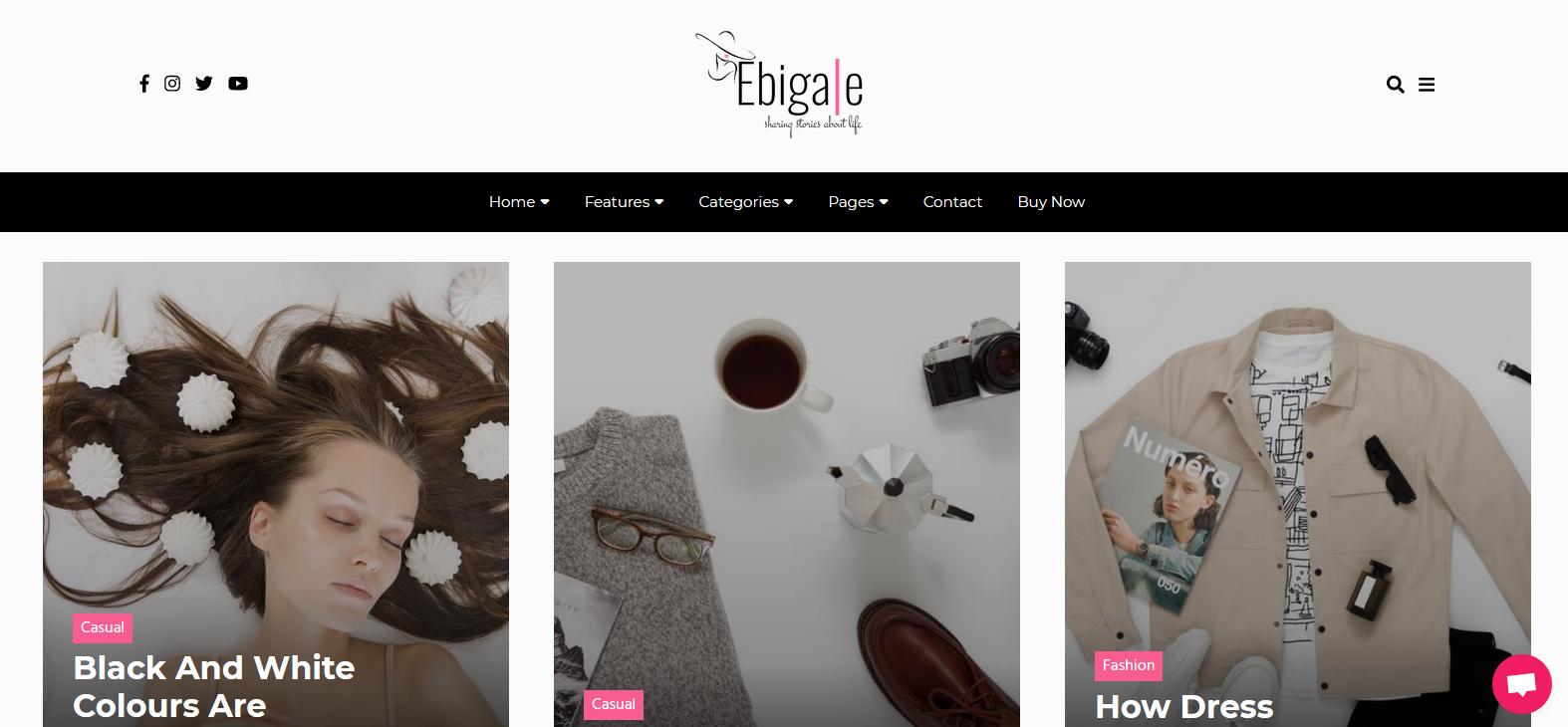Демо-сайт с темой Ebigale