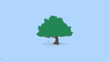 Обзор премиальной WordPress-темы Root